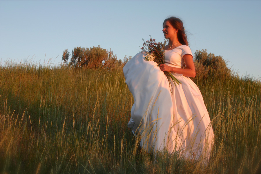 bride-standing-in-field.jpg