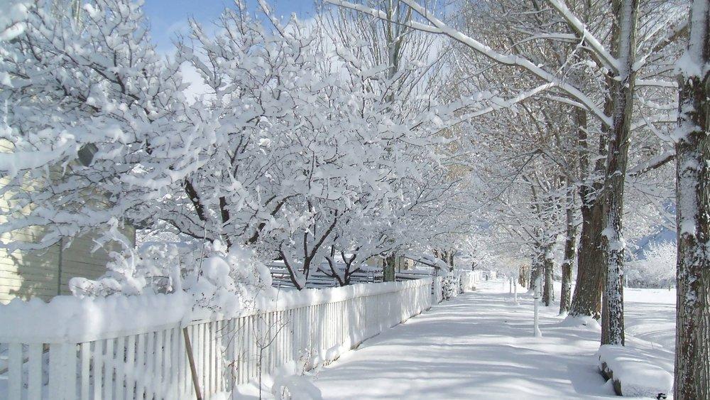 Sidewalk snow.jpg