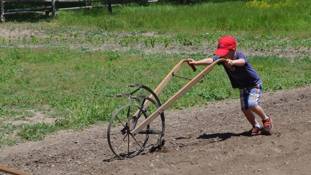 pioneer-chores.JPG