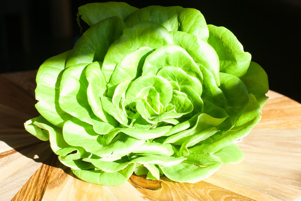 Inspired Leafy Greens Butter Lettuce