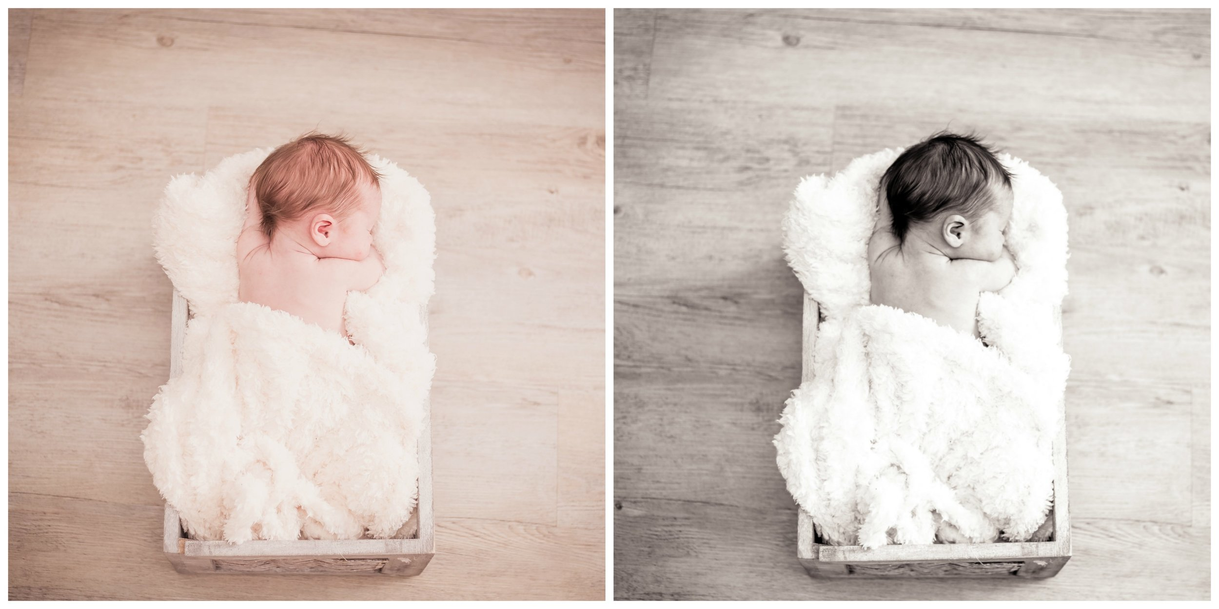 newborn, photoshoot, Cambridge, box