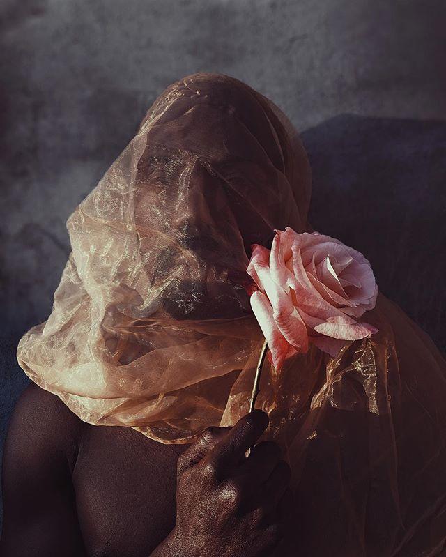 «J'aime toi et la rose. La rose pour un jour, et toi pour toujours...»