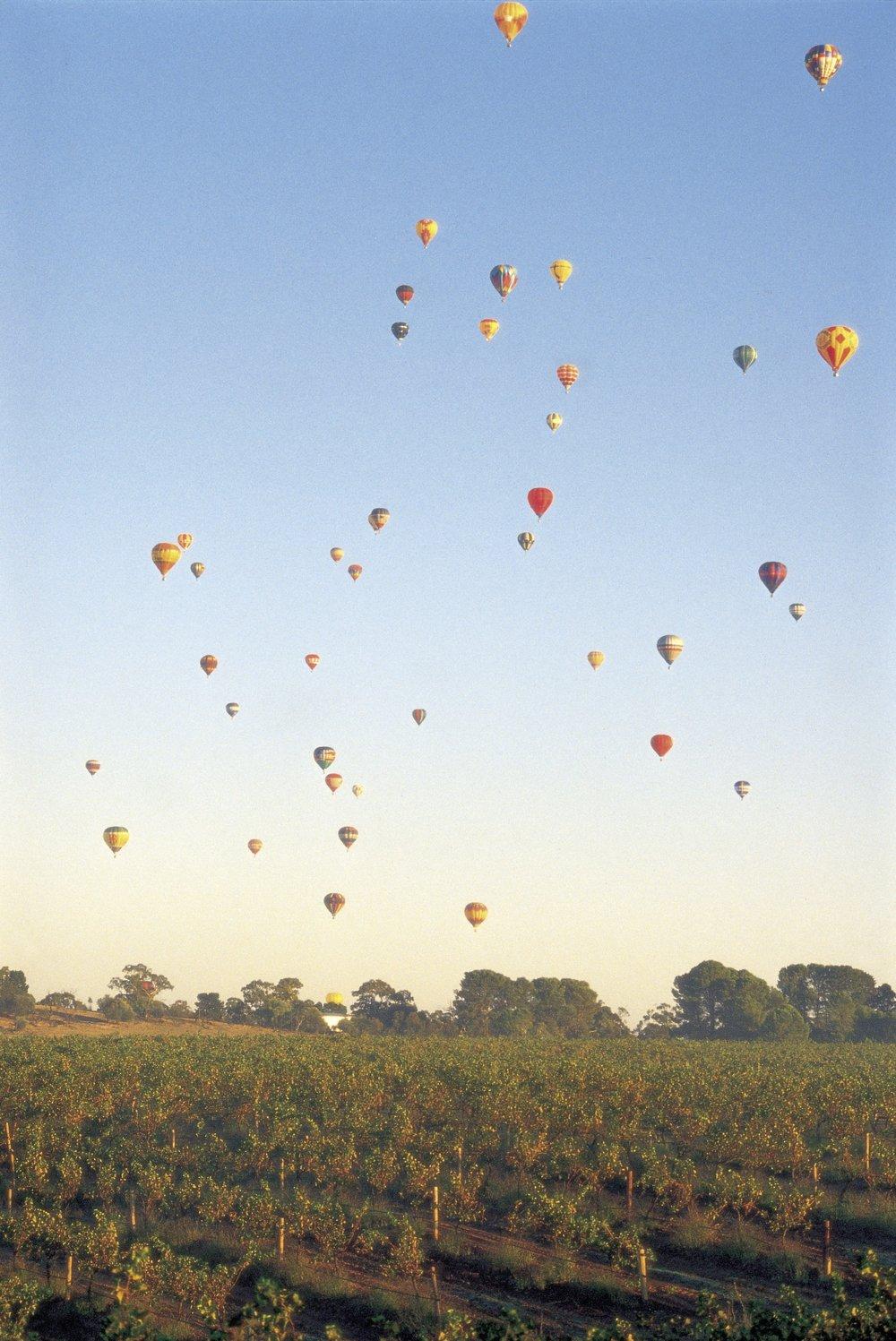 Ballooning-Barossa-SATC.jpg