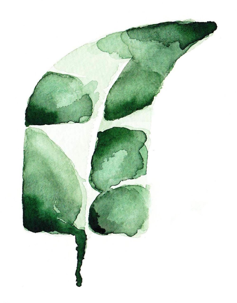 On Cloud Bloom - banana leaf 4