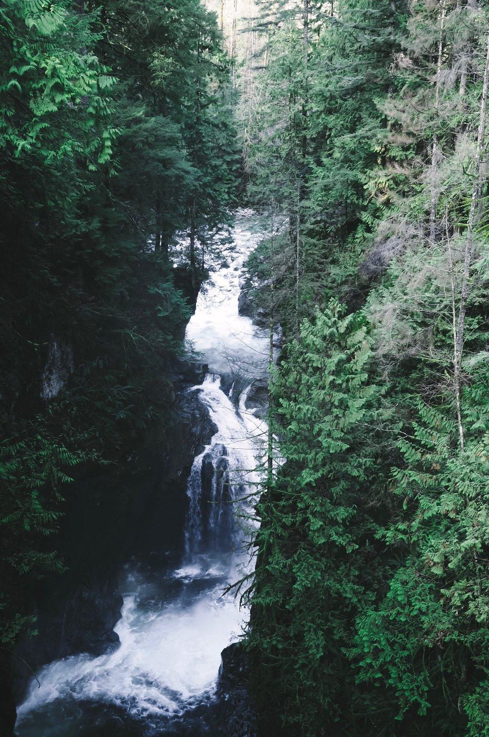 Lynn Canyon Park - Kris Gill