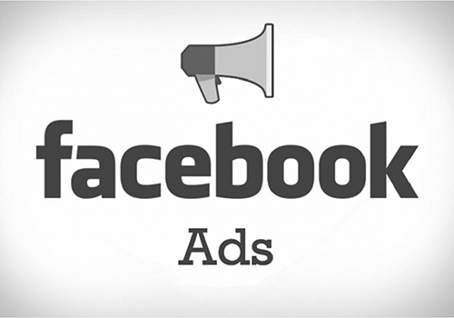Facebook Ads - We can create and manage paid Facebook advertising for you. So it is hands free for you. We are confident we can get you a great ROI! We have generated over $5000/day in profit on some Facebook campaigns.