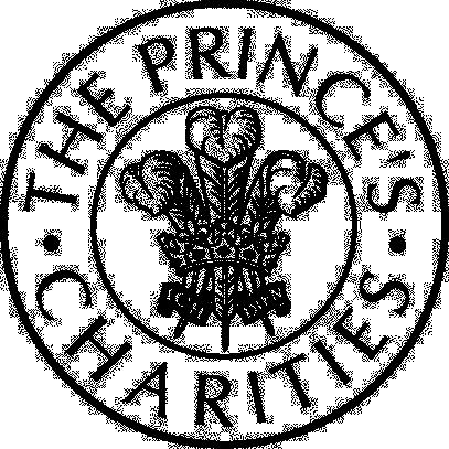 Fundatia Printul de Wales.png