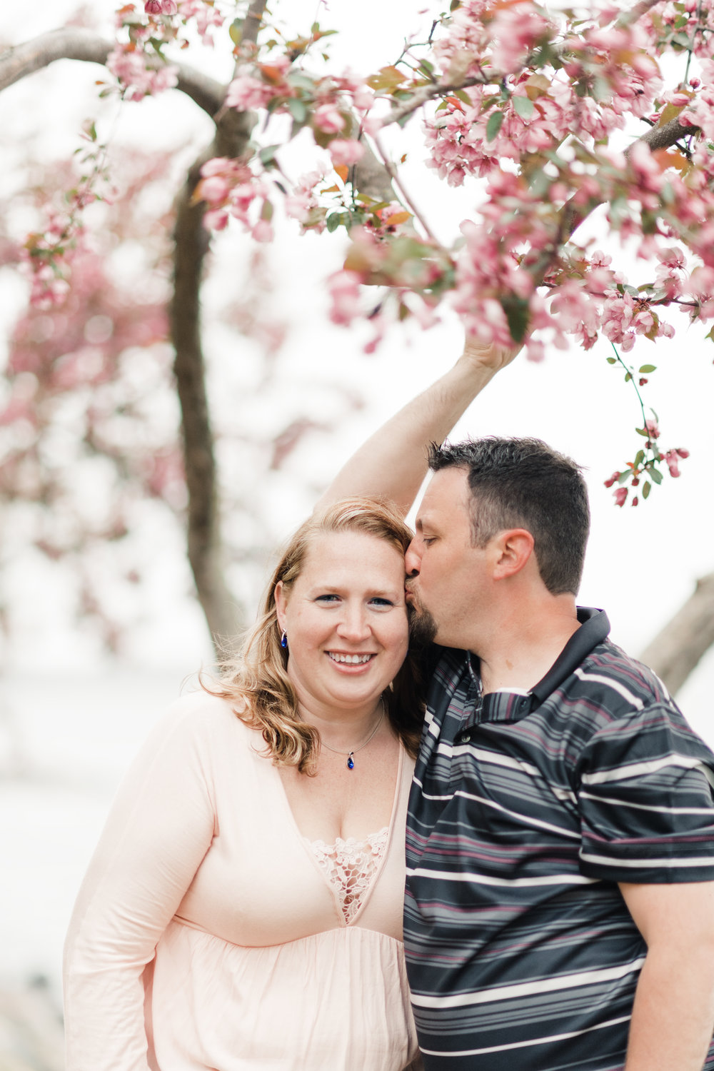 Engagement photo of a groom kissing his bride's forehead in front of a pink cherry blossom tree at James Madison Park in Madison, WI.