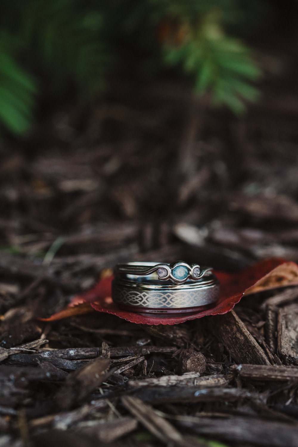 Wedding bands laying on some landscape bark.