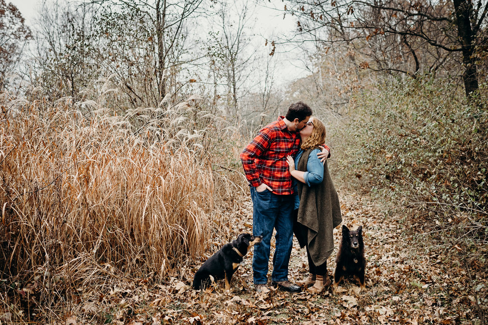 Engaged couple kisses on a path of fallen leaves while their dogs sit beside them.