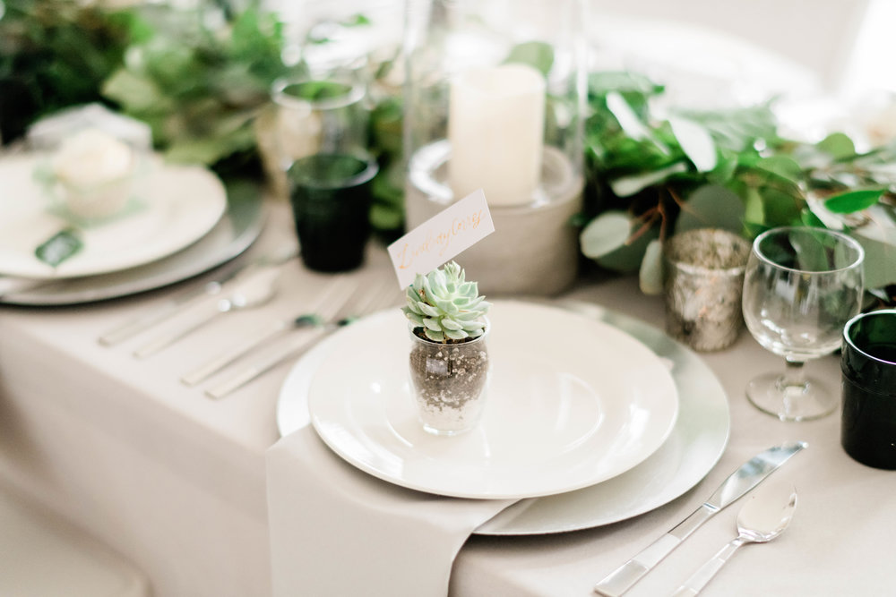 Succulent wedding favor and place card