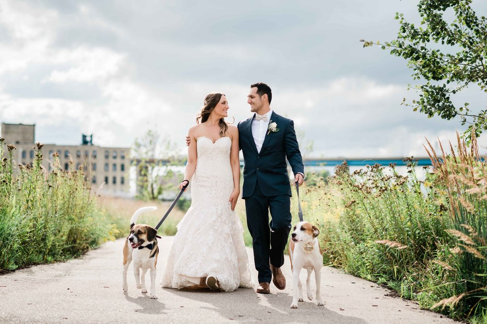 Bride and groom walk with their dogs