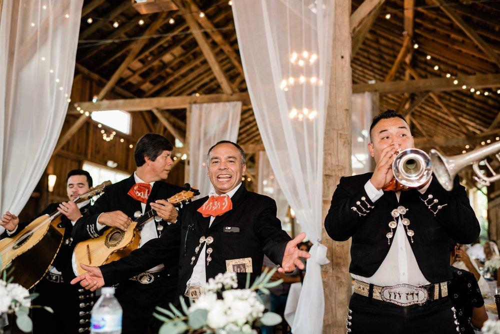 Mariachi band plays at wedding reception