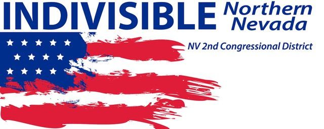 Indivisible-Banner-5'.jpg