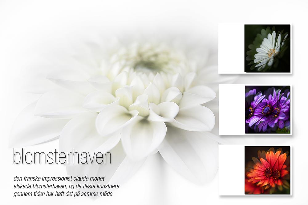 vægbilleder: blomsterhaven