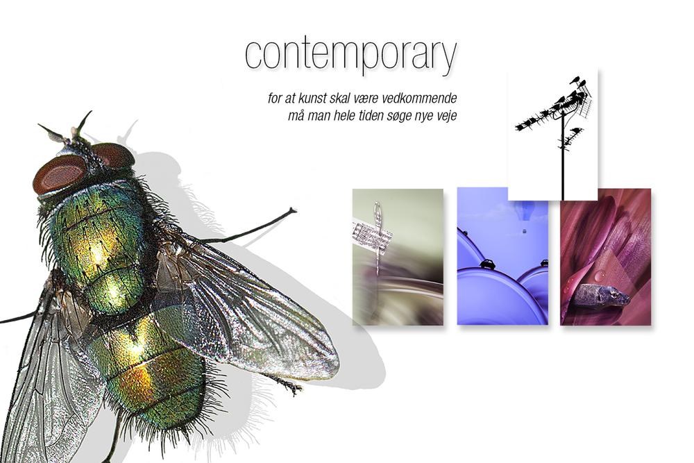 vægbilleder: contemporary