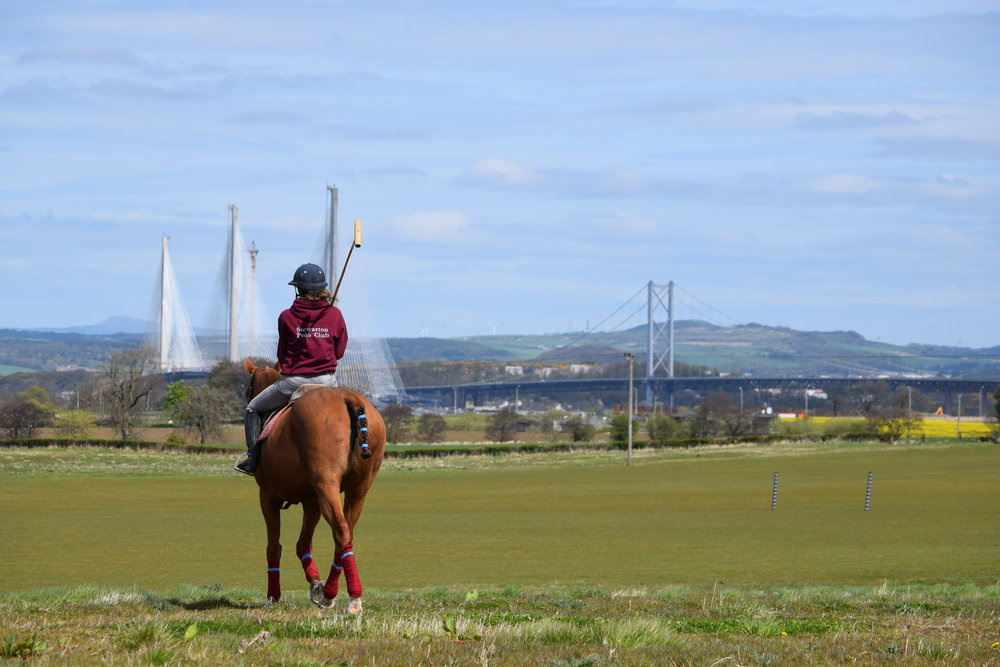 In SUMMER polo is taken out onto the grass pitches which have the unique backdrop of the famous three bridges of the firth and forth.