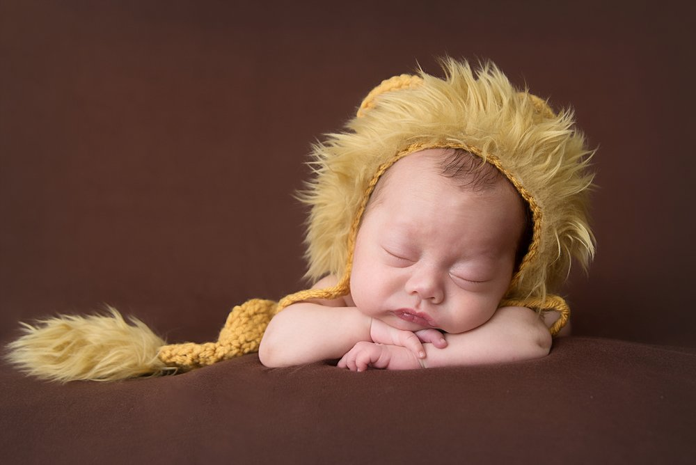 st-louis-newborn-photographer-baby-boy-wearing-lion-outfit-on-brown-blanket.jpg