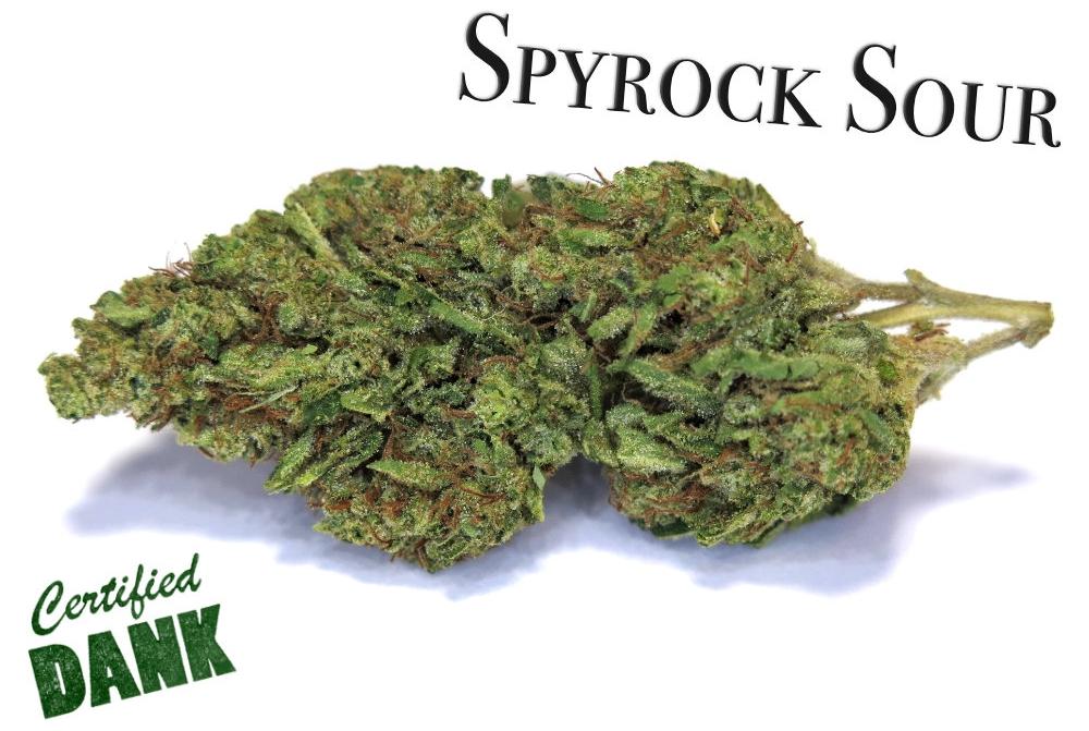 Spyrock Sour.jpg