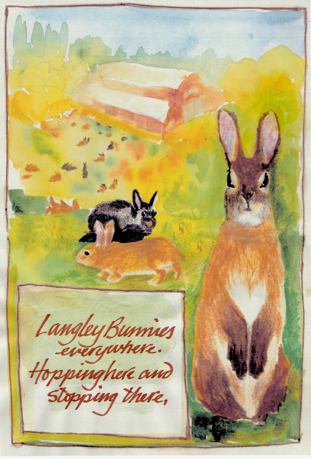 Langley's Bunnies - poem