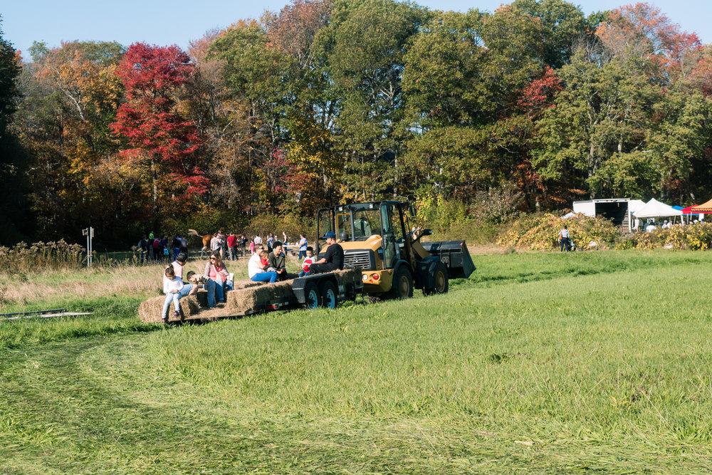 Harvest Hoopla Powers Farm Randolph MA (13 of 1).jpg