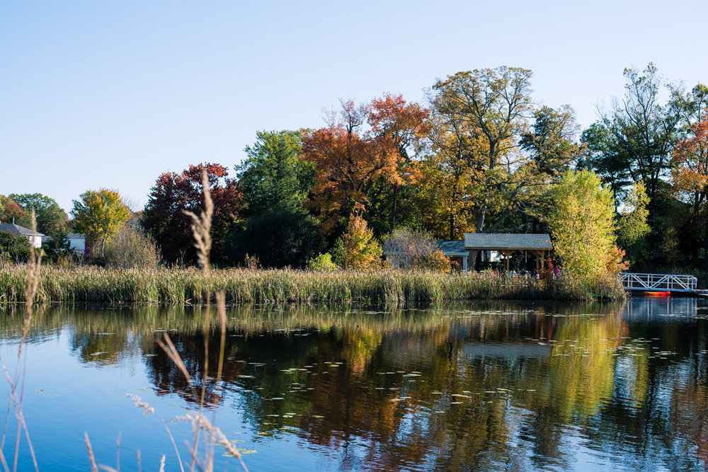 Powers Farm Pond Randolph MA Seraphine Photography (16 of 1).jpg