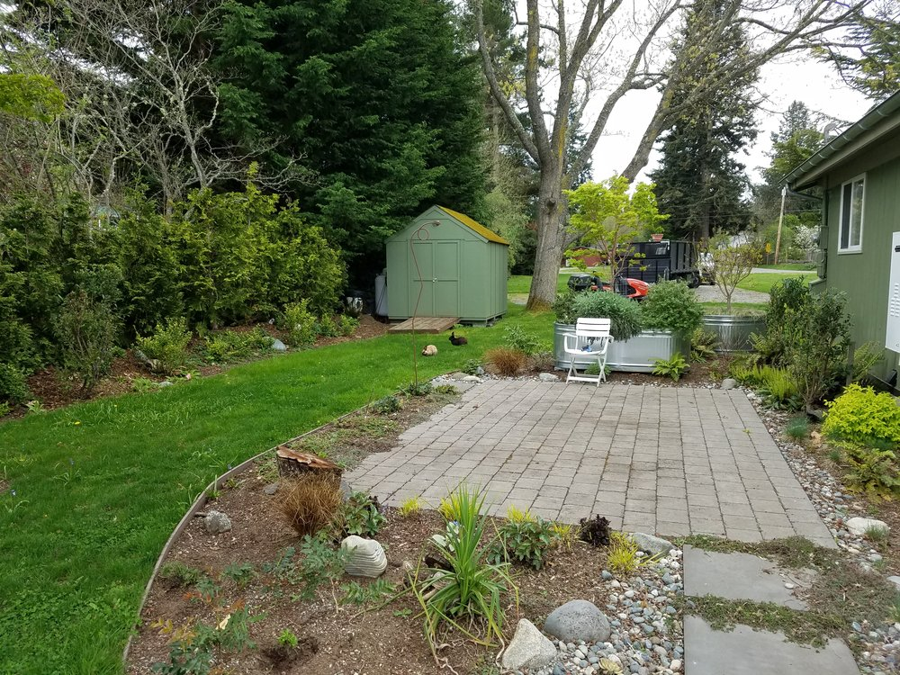 Patio and Lawn.jpg