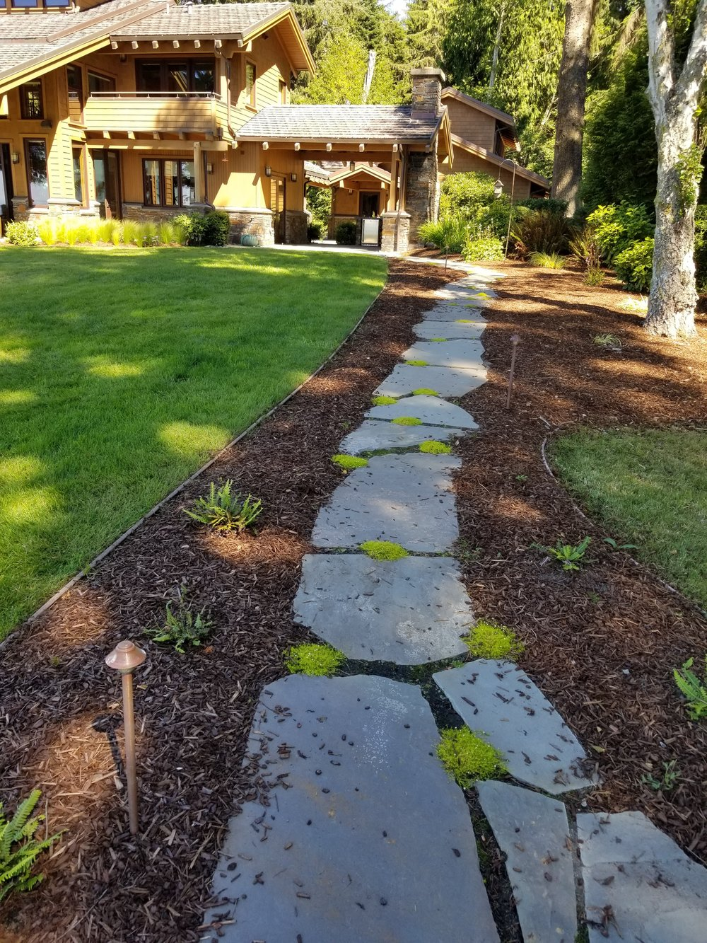 New Path to Fire Pit.jpg