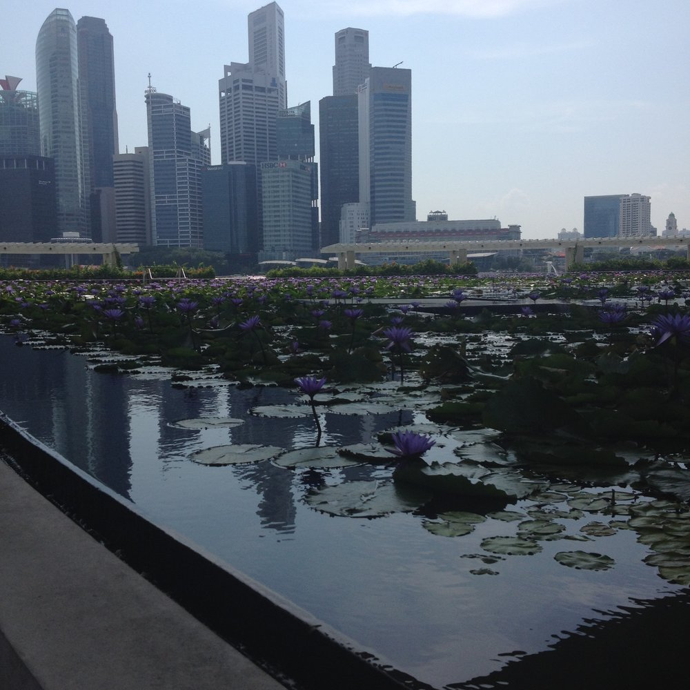 Boardwalk Marina Bay Sands flowers and skyline