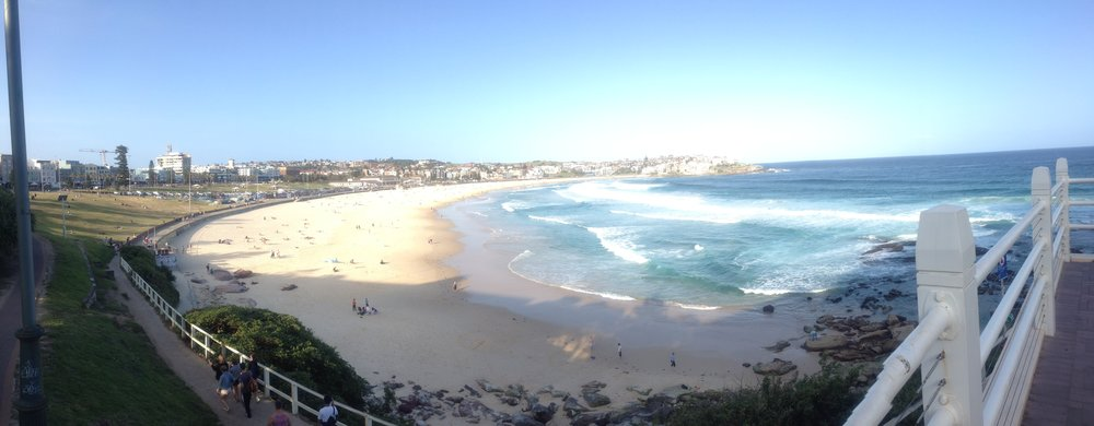 Bondi Beach Coastal Walks
