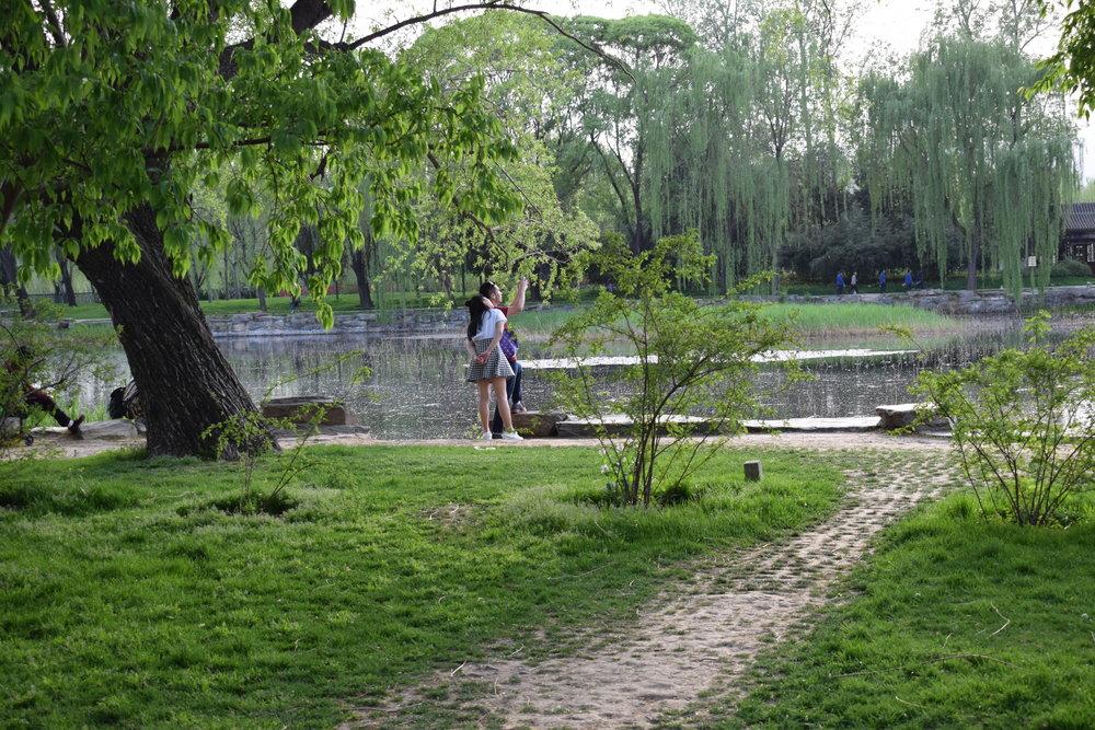 Summer Palace Beijing gardens