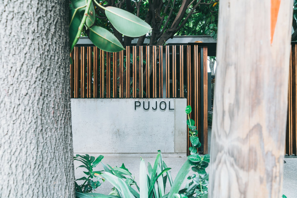 Mexico City's Pujol And The Incredible 1,345 Days Old Mole -