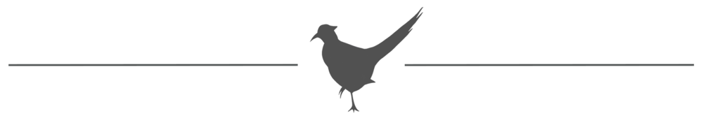 pheasant accent and line2.png