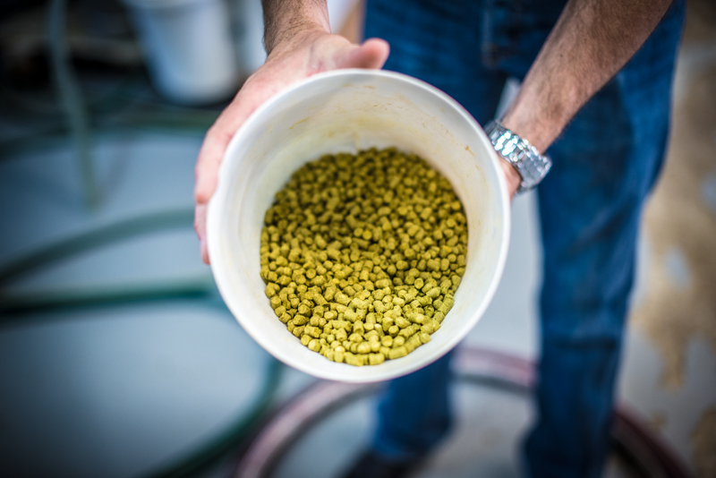 Only the highest quality ingredients go into our beers!