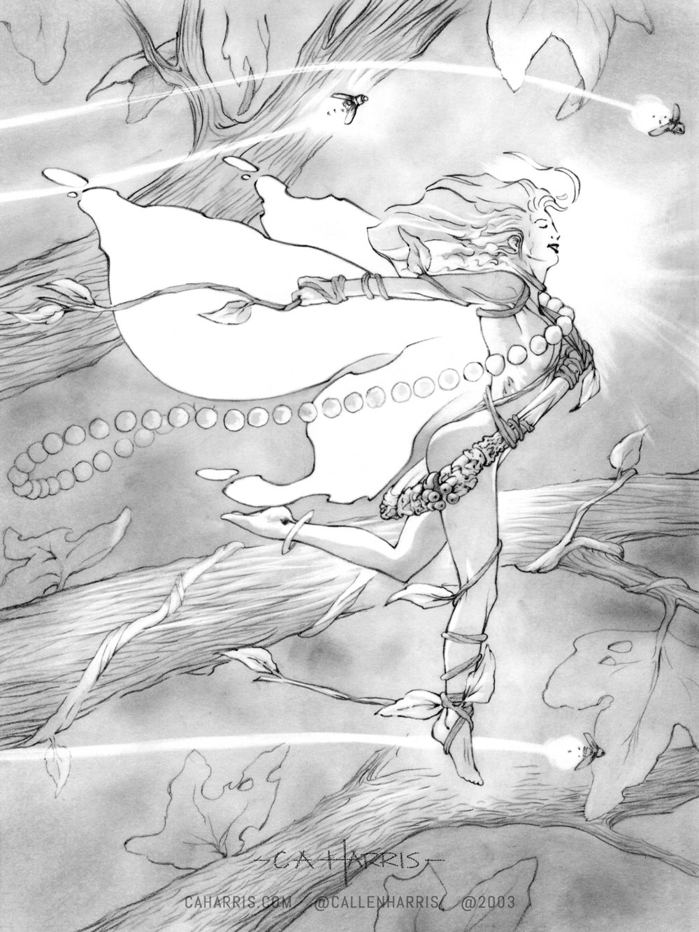 ah.fairypencil2 1600 sig.jpg