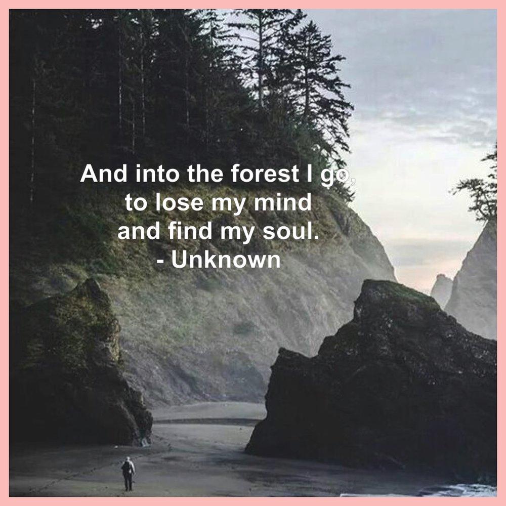 Soul quote4.jpg