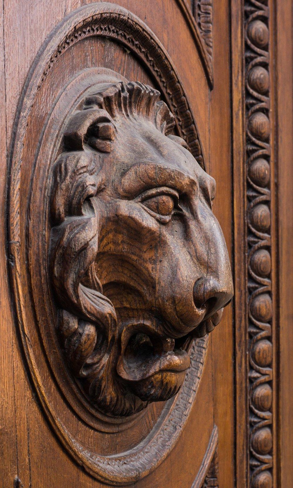 lion-2136928_1920.jpg
