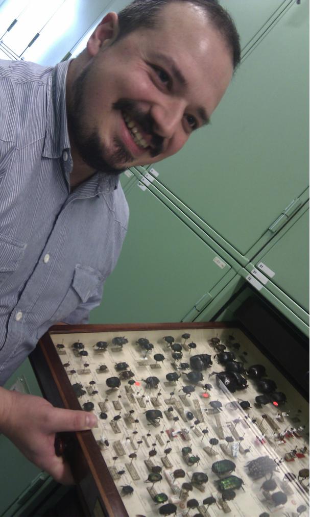 Uno de los cajones entomológicos con ejemplares históricos. Quién los enseña es Conrad Gillet, estudiante de doctorado del museo, amigo y entomólogo brillante, de esos que le dedican su vida a los escarabajos con más pasión de la que la gente le dedica a vivir.