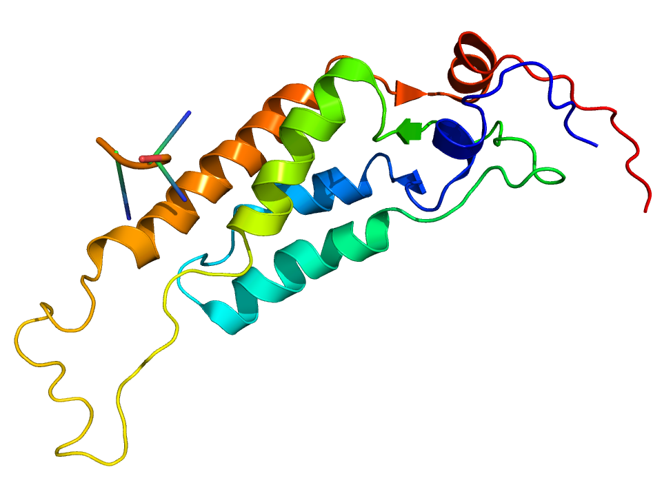 Tobacco_Mosaic_Virus_structure
