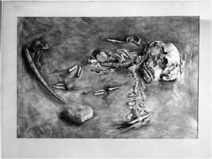 Imagen que muestra el ejemplar de hace 24 000 años (Tomada de la nota de Science).