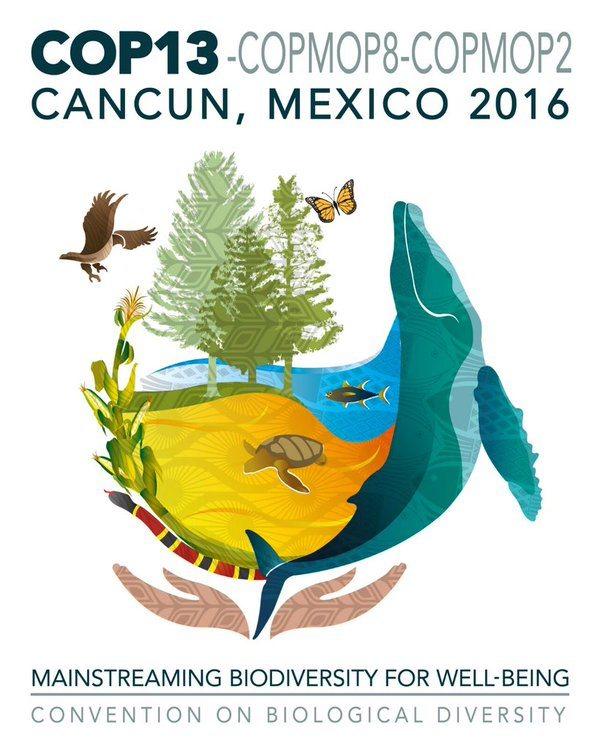 Logotipo de la COP13. Reproducido de https://whc.unesco.org/en/news/1601