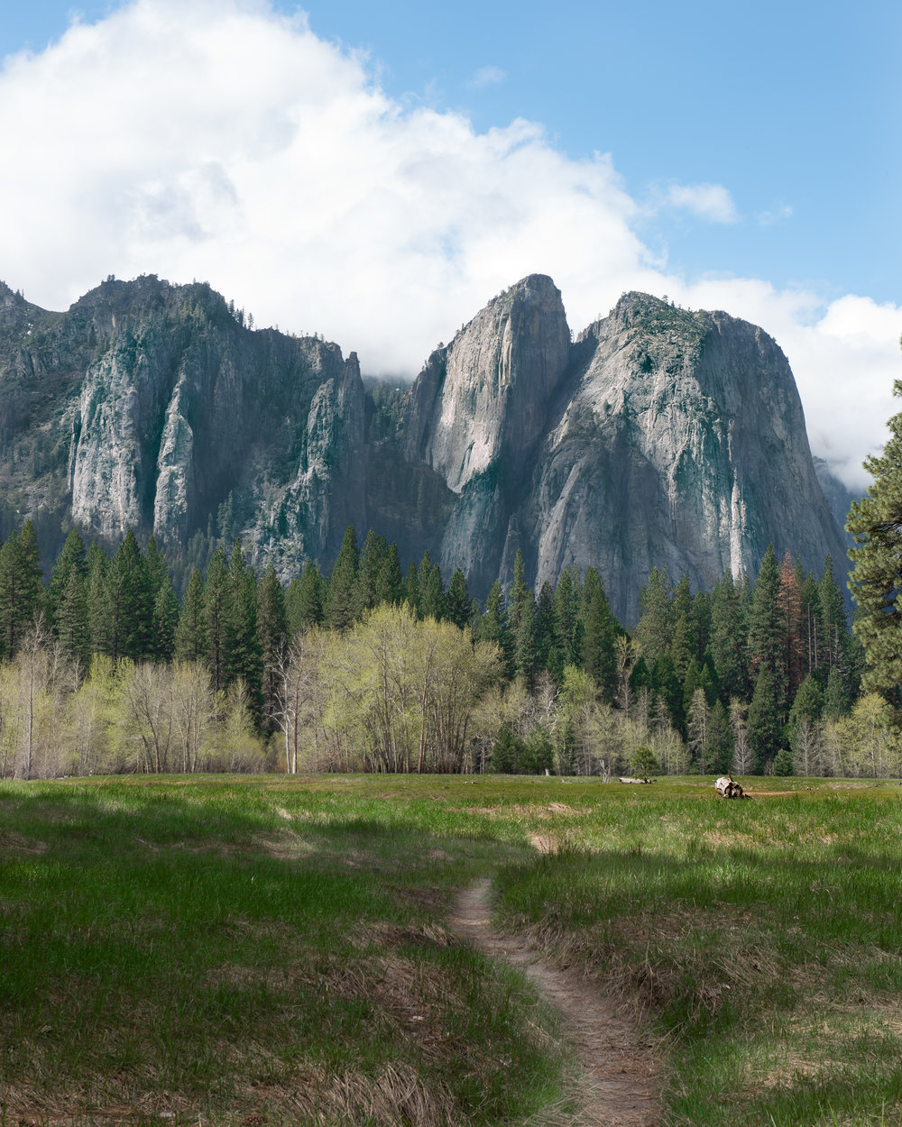 Yosemite Valley rocks trees - Web Prepared.jpg