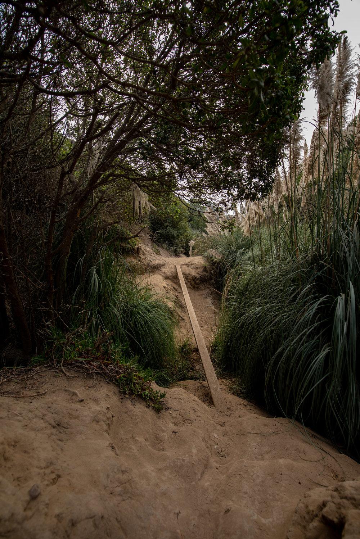San Diego Trip 2018-6.jpg