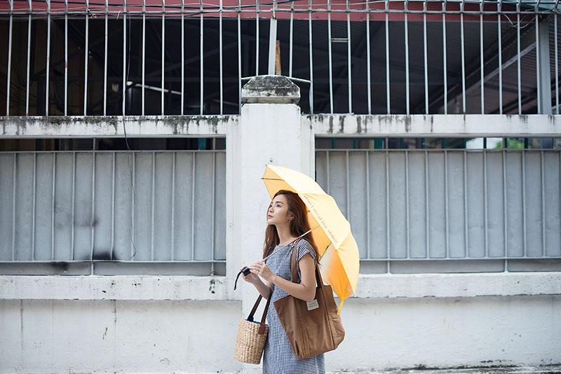 Bright parasol - 800px.jpg