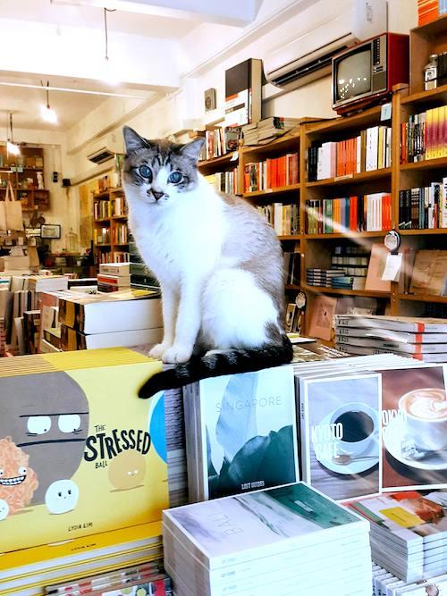 momo_bookstore_tiem_sach_sai_gon_1.jpg