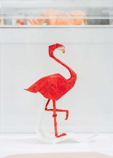 bright_tries_origami_khong_chi_la_nhung_nep_gap_2.jpg