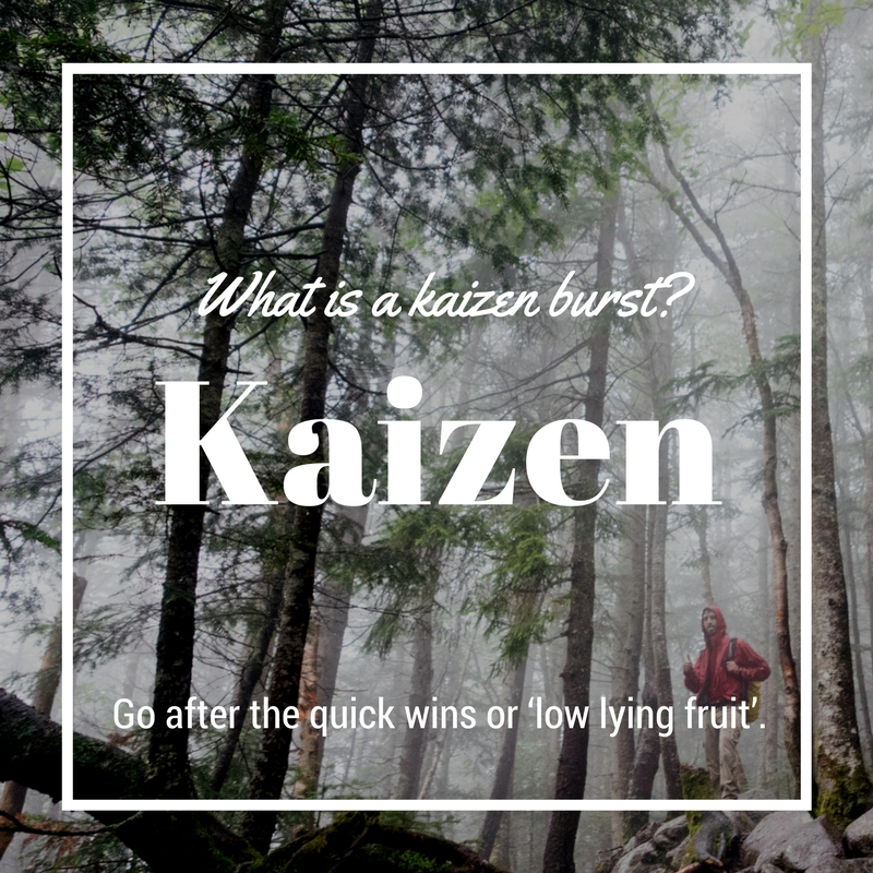 What is a kaizen burst? - A kaizen bust is a quick and short event where you quickly identify areas where you can improve some things specifically and you work to fix them. Go after the quick wins or 'low lying fruit'.Maybe it's a weekend where you focus on one goal. You want to embrace a healthier lifestyle, so you go grocery shopping, download a running training app, dig out your yoga mat, and prepare for a more relaxing morning routine.A little burst can be great to get things in motion but it's the small changes that come afterward that will make things sustainable.What could you do a kaizen burst on? Doing this once a month or with the moon cycle s great way to incorpeorate this concept.