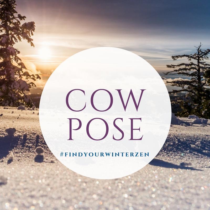 9. Cow pose -