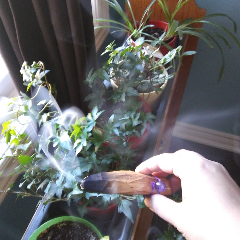 Smudge your plants