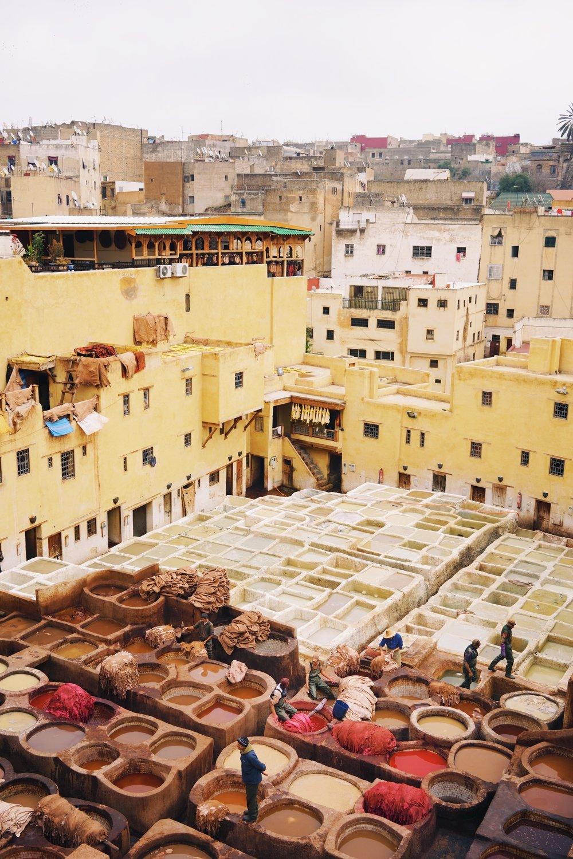 สถานที่ย้อมหนังอันโด่งดังใน Fez